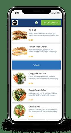 Screenshot of Online Ordering app (mobile version)
