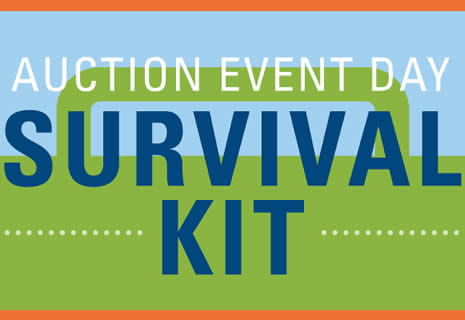 Greater Giving Go Time Event Stats - auction day survival kit