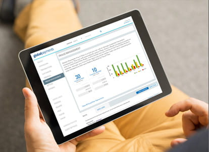 Online Transaction Fraud Management
